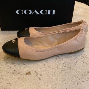 * NWT* Bonnie Leather Ballet Shoe